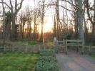 Woodland Pathways