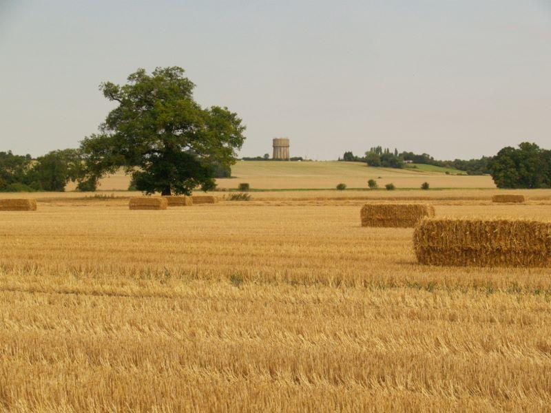 View from Astwick