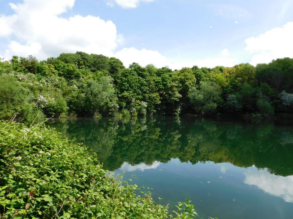 Green Lagoon fishing