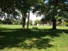 Cricket Walks