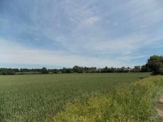 County Walks