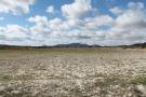 Land for sale in Pinoso, Alicante, Spain