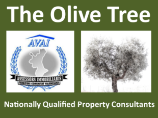 The Olive Tree Pinoso, Alicantebranch details