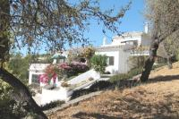 Villa for sale in Algarve, Boliqueime
