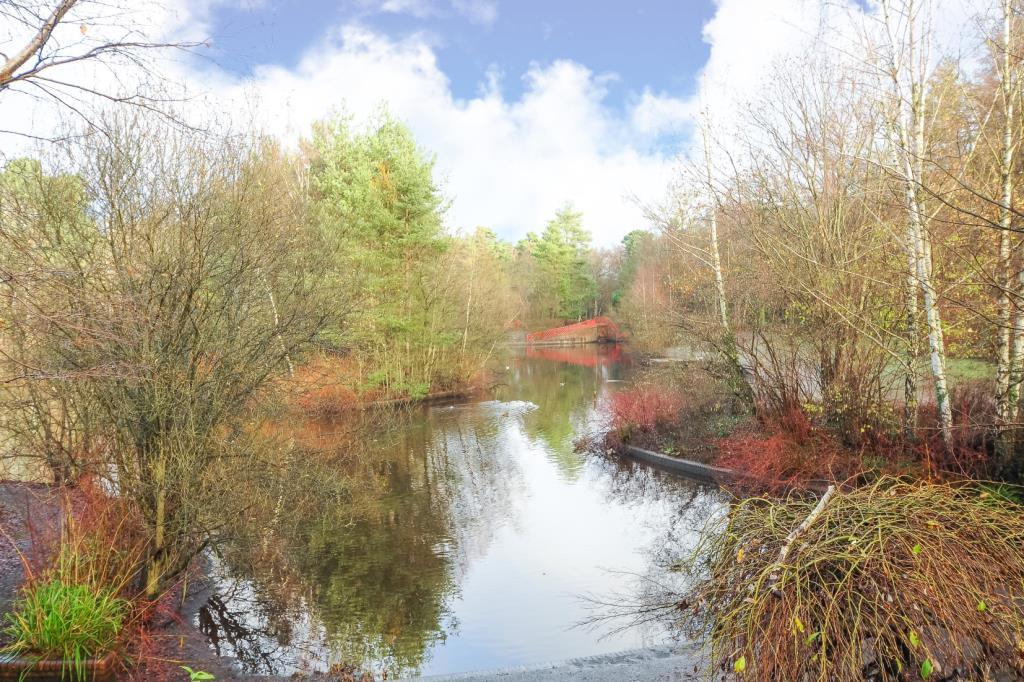 Local Savernake Park