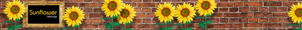 Get brand editions for Sunflower Lettings, Tunbridge Wells