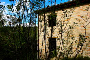Country House in Le Marche, Fermo...