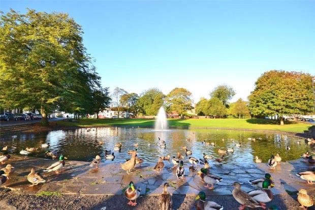 Norton Duck Pond