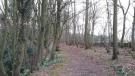 property for sale in Conygre Wood, Kingscote, Tetbury, Gloucestershire, GL8