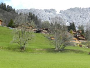 Chesieres Chalet for sale