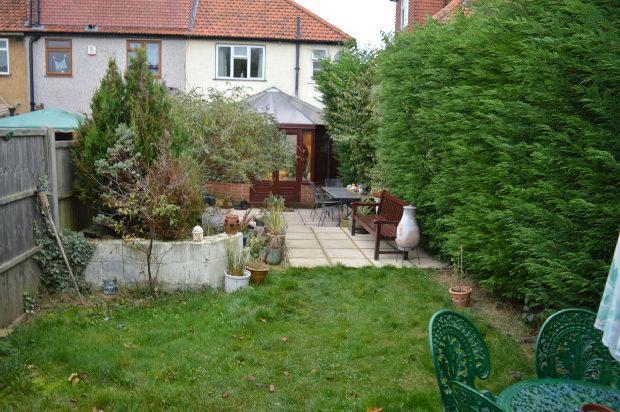 Garden Extra Photo