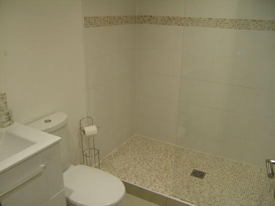 Shower room (guest)