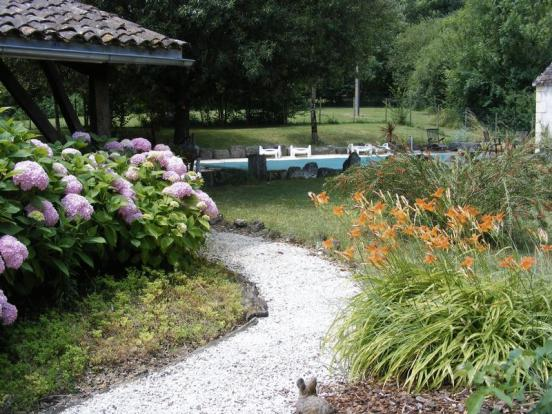 Garden and Pool for