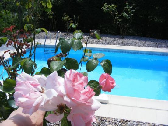 House 2 Pool
