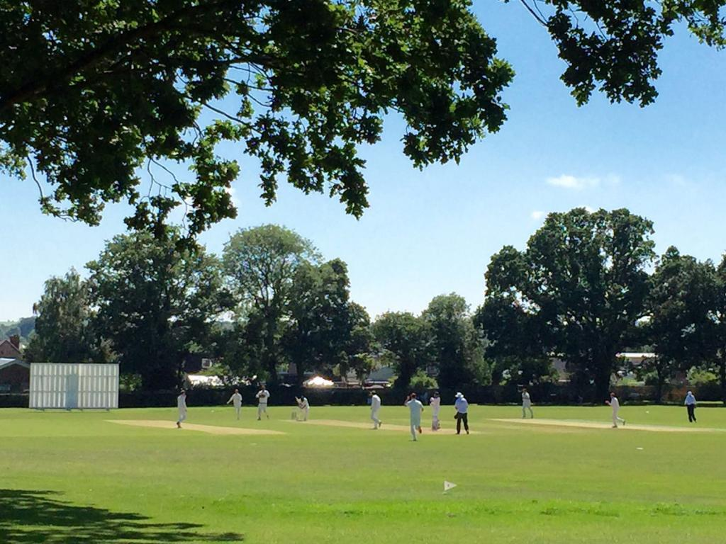 Cricket at Jubilee Park