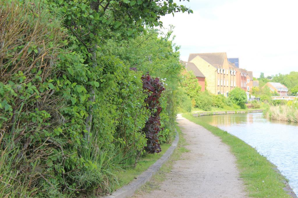 Canal footpath adjacent to property
