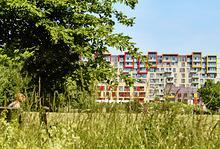 Countryside , Greenwich Millennium Village