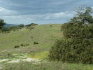 Land for sale in Ourique, Beja, 7670...