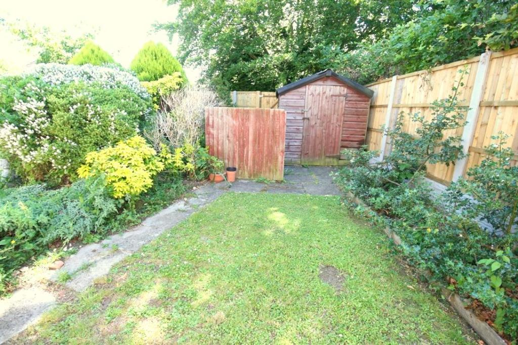 Side Garden and Shed