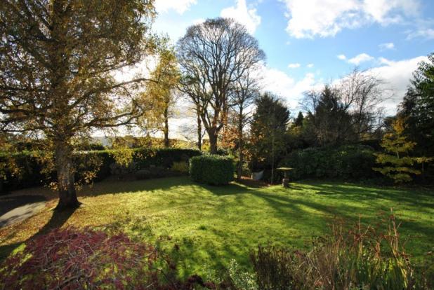 Bannerdown Front Garden