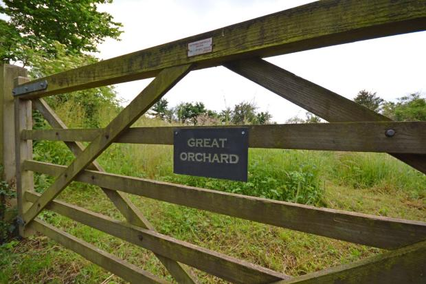 Gate To The Orchard