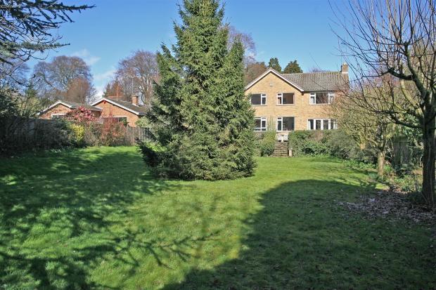 Rear garden to house