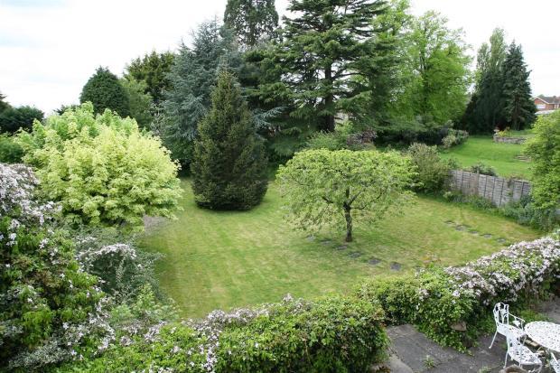 Garden from Bedroom