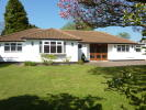 3 bed Detached Bungalow for sale in Newick Avenue...