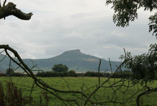 View of Roseberry Topping