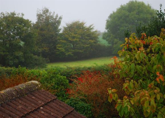 view from bedroom.JP