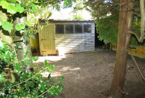 Back Rear Garden & shed