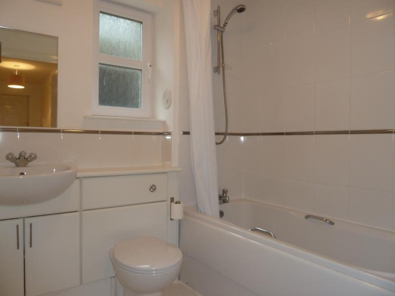 176c South College Street - Bathroom