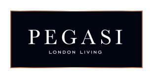 Pegasi Management Company Ltd, Londonbranch details