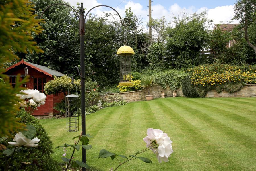 New Garden 4