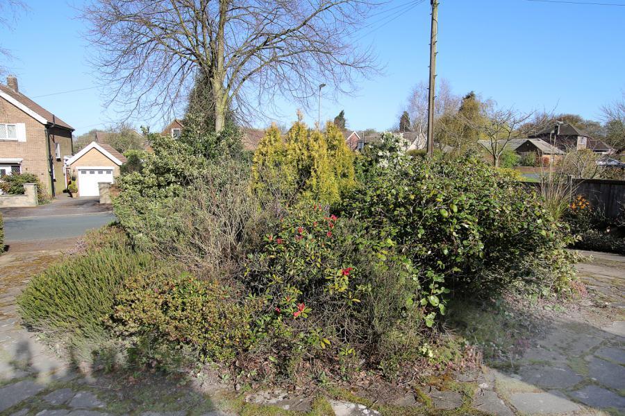 Ftront Garden