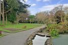 The Park Stream
