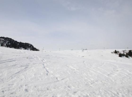 Ski in and out acces
