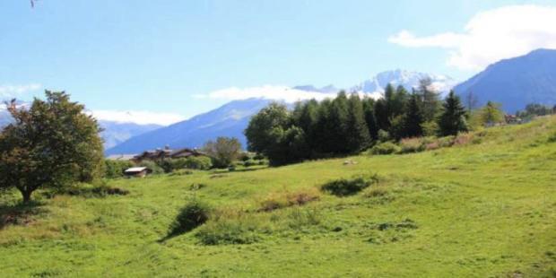 Views of the mountai