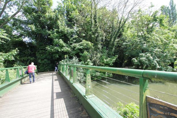 bridge to the meadow