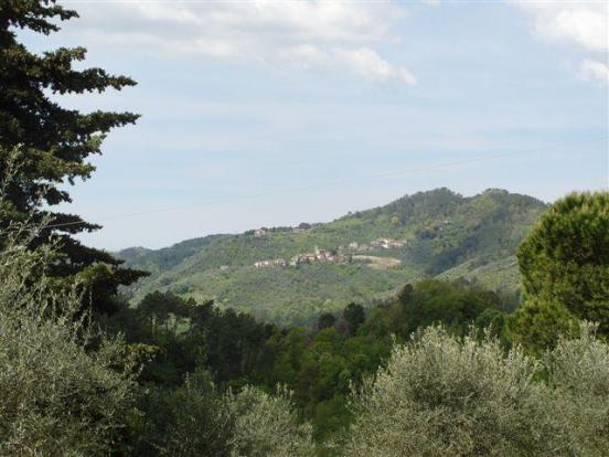 Villa Costanza View