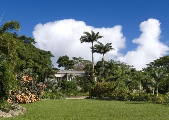 Barbados For Sale