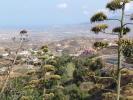 Views from Bédar