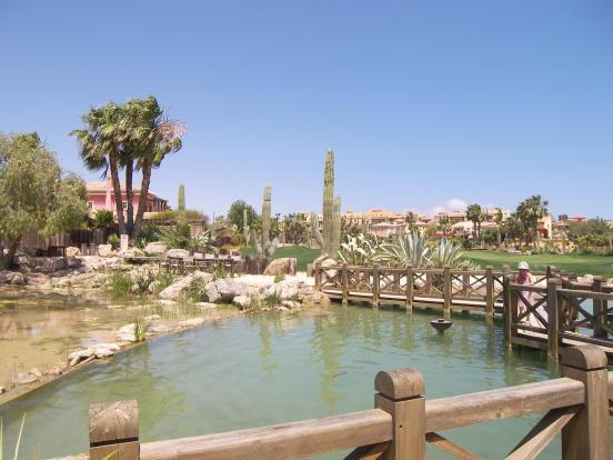 Desert Springs Golf