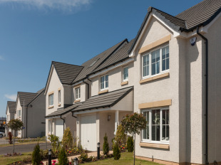 Bluebell Meadows by Barratt Homes, Petrel Way,