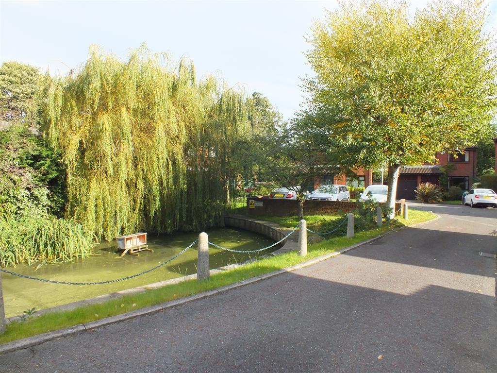Communal Duck Pond