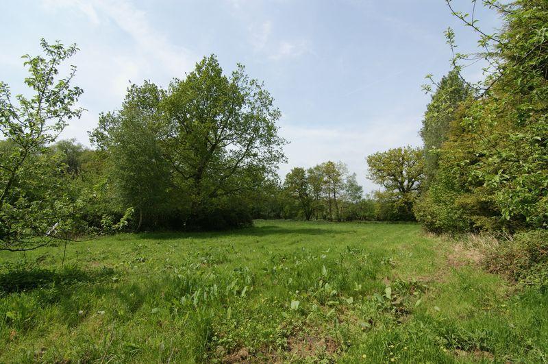 2nd field