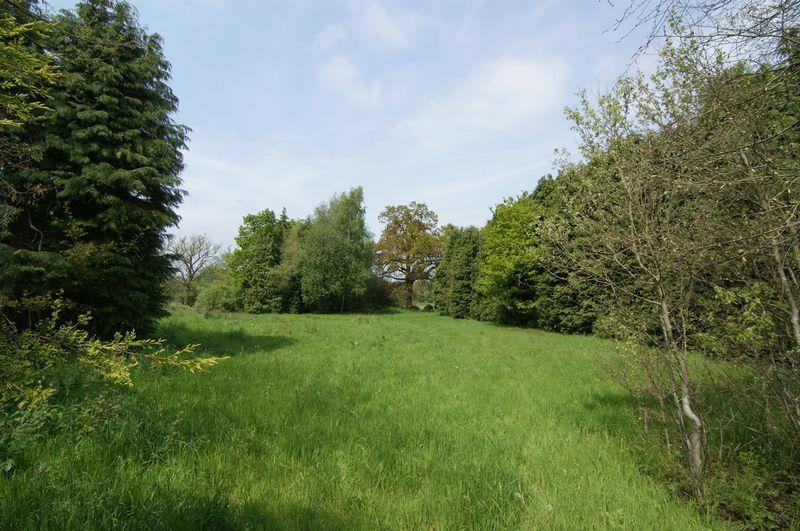 3rd field