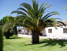 7 bedroom Village House for sale in Ribatejo, Santar�m