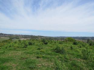 property for sale in 170A Lagoon Grass Road, GOONELLABAH 2480