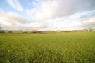 Land adjacent to Adderley Road Land for sale
